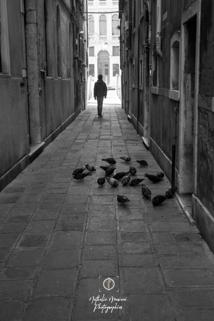 Enfant et pigeons - Venise